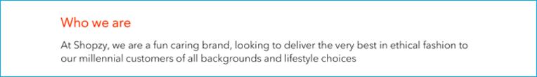 Job description - about company